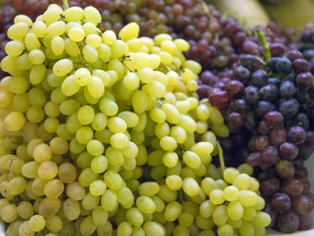 Все вина изготавливаются только из натуральных виноградных соков