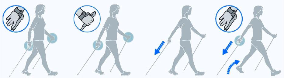 Rozetka. Ua | фото алюминиевая палка для скандинавской ходьбы.
